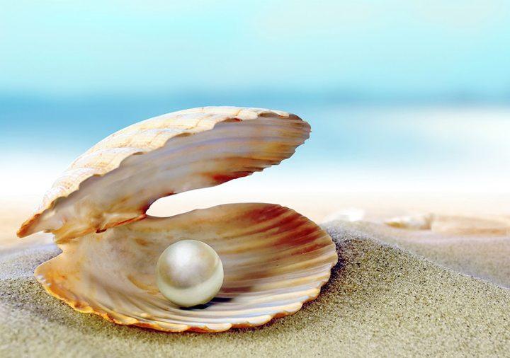 Морской жемчуг